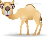 Vector camel cartoon