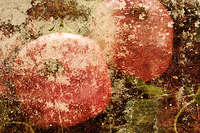 Granatapfel Grunge Retro