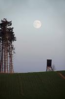 Landschaft mit Hochsitz und Mond