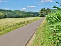 Mainradweg bei Gemunden