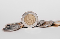 Polish 5 Zloty coins background