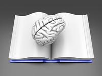 Brain Book.
