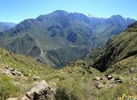 Der Colca Canyon in Peru