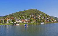 Das rechte Neckarufer in Heidelberg