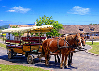 Pferdefuhrwerk Moderner Kremser, ein gefederter Planwagen