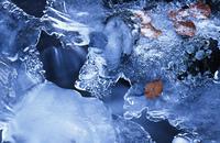 Eisscholle auf einem Waldbach im Lipperland