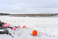 Ice skating at Lake Neusiedlersee in the foreground old buoy