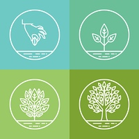 Vector infographics design elements and icons in linear style - business development and growth concepts - growing plant from seed to tree