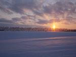 朝日と雪原