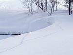 雪原と足跡