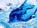 ガラス細工のイルカ
