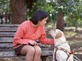アイメイト(盲導犬)と女性
