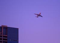 ビルと飛行機