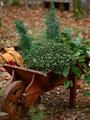 ガーデンカート