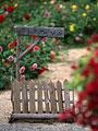 タイトル:花壇
