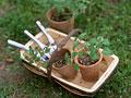 ツールバスケットと鉢植え