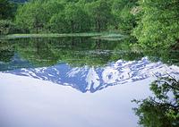 扇谷地溜池