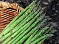 タイトル:グリーンアスパラガス